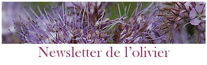 www.lolivier.net